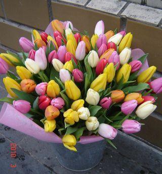 Доставка тюльпанов срочно по Киеву