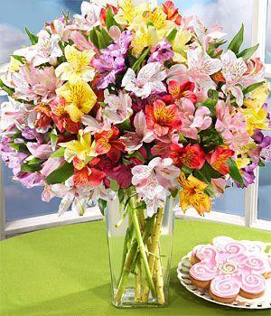Доставка цветов на день рождения в украине презентабельный подарок мужчине