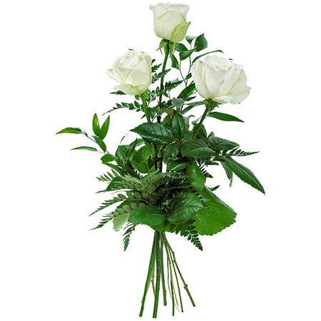 Заказать три белые розы с доставкой Киев