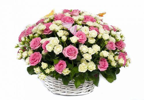 картинки с корзины с цветами
