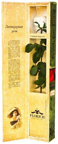 Белая роза в подарок