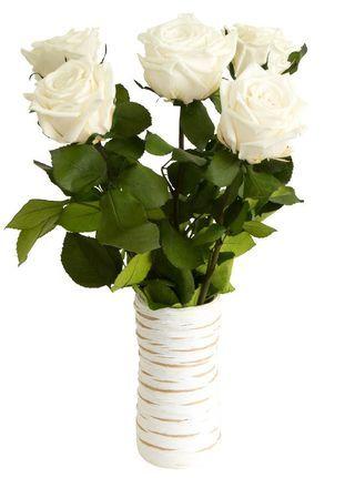 Купить идеальные, шикарные белые розы Флора-Сакура