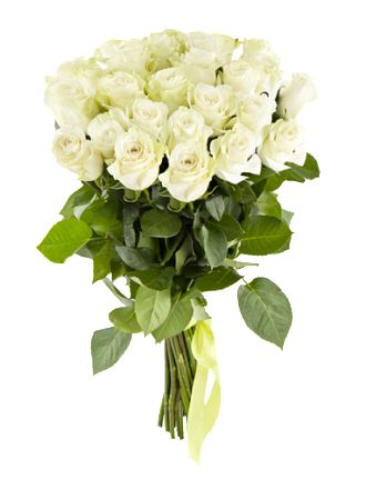 Доставка белых роз по Украине и Киеву