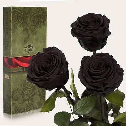Заказать доставку черных роз по Украине