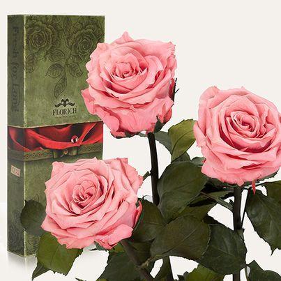 Доставка розовых роз из России в Украину