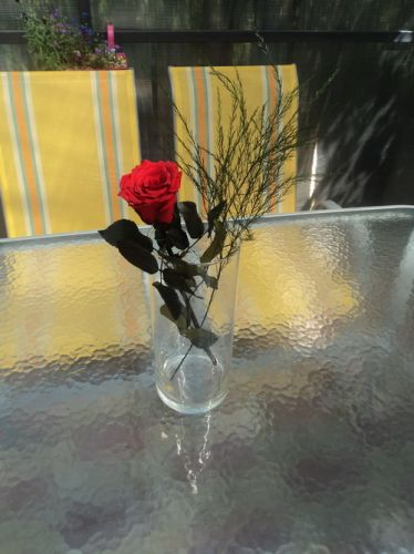Алая роза - идеальная красная роза, купить в Киеве, Украине