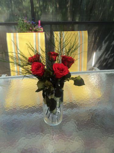 Доставка алых бессмертных роз по Киеву и Украине