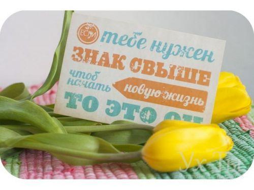 Необычные открытки к цветам - купить в Киеве